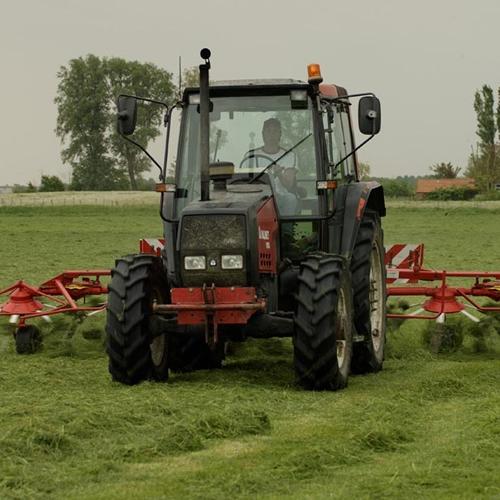 De landbouw van Kaasboerderij Schellach