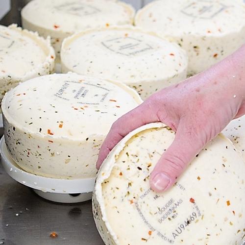 Kaas maken op Kaasboerderij Schellach